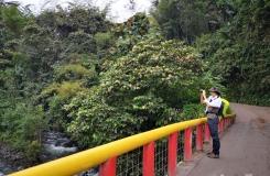 Ecuador-Atheris-2019-163