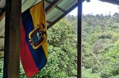 Ecuador-Atheris-2019-227