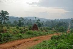 Ouganda_herping_065