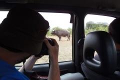 Ouganda_herping_083