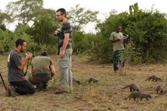 Ouganda_herping_104