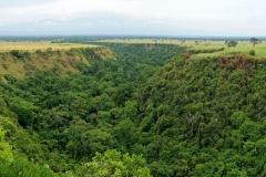 Ouganda_herping_120
