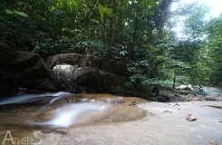 BorneoKomodo-230