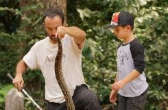 Boa constrictor shooting