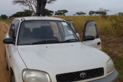 Ouganda_herping_118