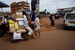 Ouganda_herping_150
